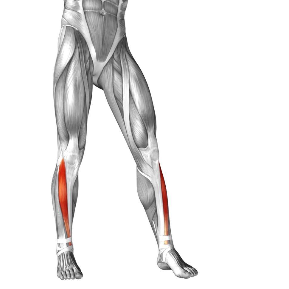 ITBS, bolesť kolena zvonkajšej strany